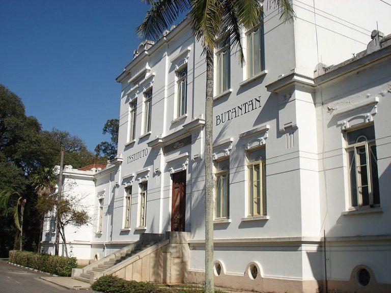 Instituto Butantã, Em São Paulo